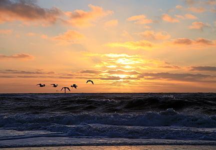posta de sol, l'aigua, Mar, abendstimmung, estat d'ànim, cel, taronja