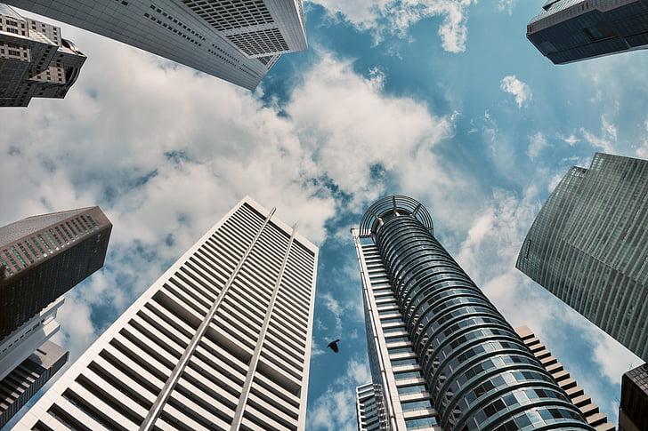architecture, skyscraper, cbd, singapore
