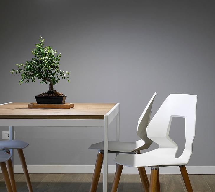 interjöör, disain, Tabel, toolid, mööbel, roheline, taim