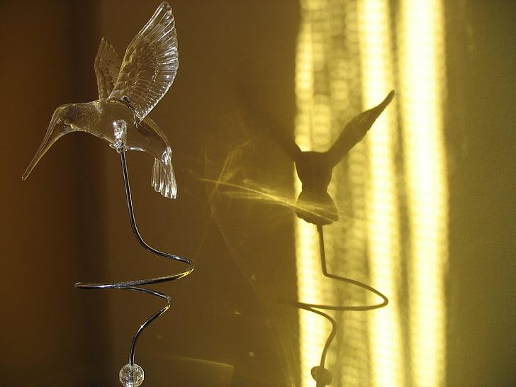 колібрі, штучні, птах, тінь