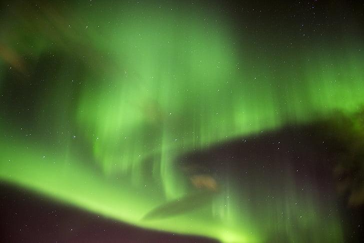 ánh sáng, ánh sáng, Aurora, đêm, Thiên nhiên, màu xanh lá cây, Aurora polaris