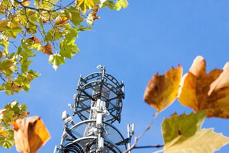 원격 로그인 돛대, 라디오 돛대, 통신, 안테나, 플랫폼, 리셉션, 뉴스