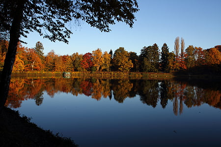 autumn, trees, lake, mirroring, landscape, autumn colours