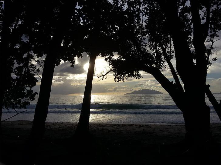 platja, posta de sol, paradís, sorra, viatges, tropical