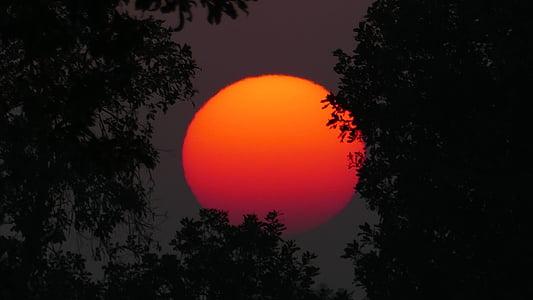 pôr do sol, vermelho, céu, arrebol, sol, céu da noite, noite