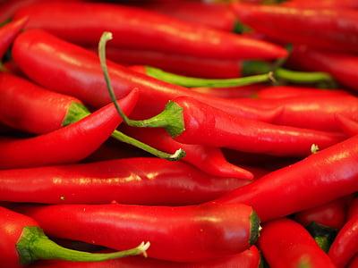 chili, punane, Sharp, Spice, tšillipipar, pepperoni, kaunad