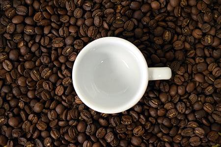 café, Copa, xícara de café, grãos de café, copo vazio, feijão, contraste