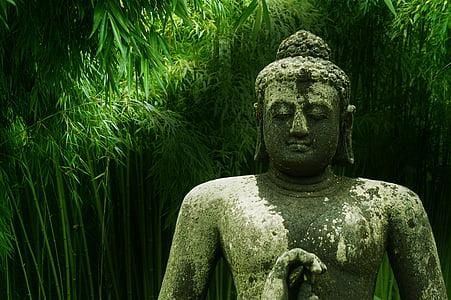Buddha, bambusz, meditáció, Zen, Ázsia, buddhizmus, vallás