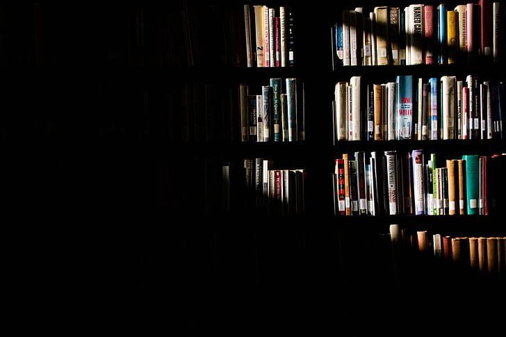 sluneční světlo, police, knihy, Knihovna, stín, Knihovnička, kniha