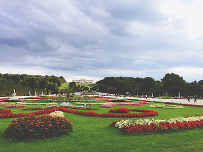 jardí de flors, disseny de paisatge, jardí, paisatge, disseny, pati, disseny de jardins