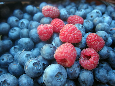 wild fruits, fruits, wild, fruit, berries, fruits of the forest, blueberries