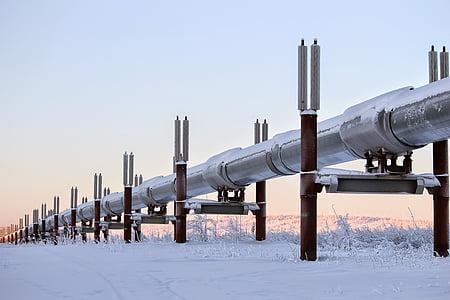 l'hivern, Alaska, canonada, oli, neu, estructura, paisatge