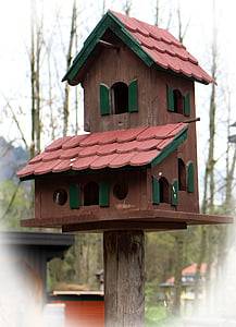aviary, bird feeder, bird, nesting place, animal welfare, feed, birdhouse