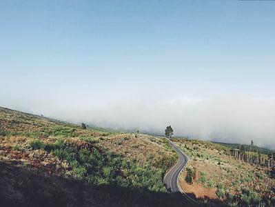 yol, Bend, doğa, manzara, eğri, seyahat, ulaşım