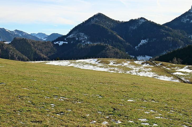 muntanyes, Prat alpí, pastures alpins, Prats de muntanya, Prat de muntanya, Prat, les pastures