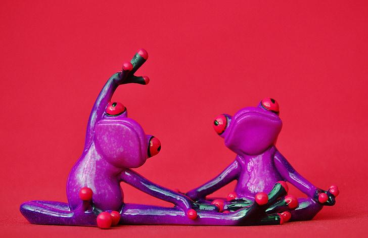 žaby, obrázok, Jóga, gymnastika, smiešny, žaba, Zelená