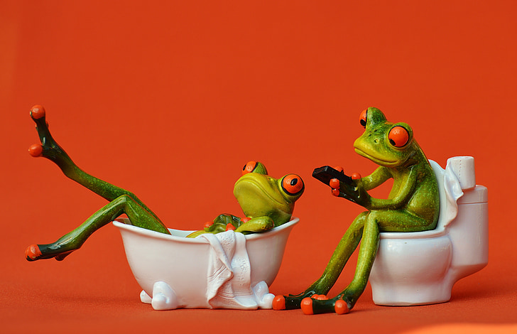 fürdő, vécé, békák, vicces, fürdőszoba, munkamenet, cuki