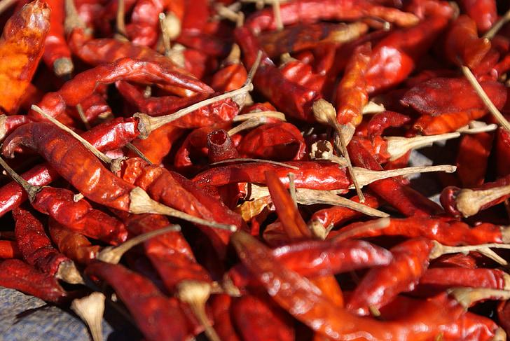 čili, čili paprika, Crveni, oštar