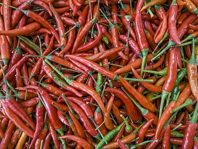 chili, pipar, punane, toidu, taimne, värskuse, Spice