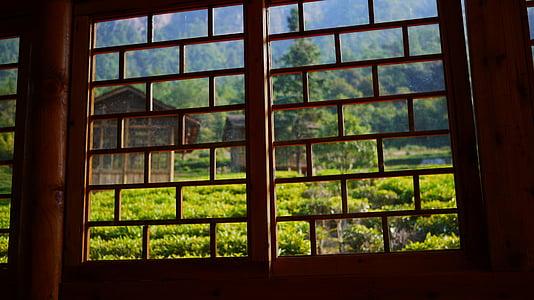 tea house, window, green