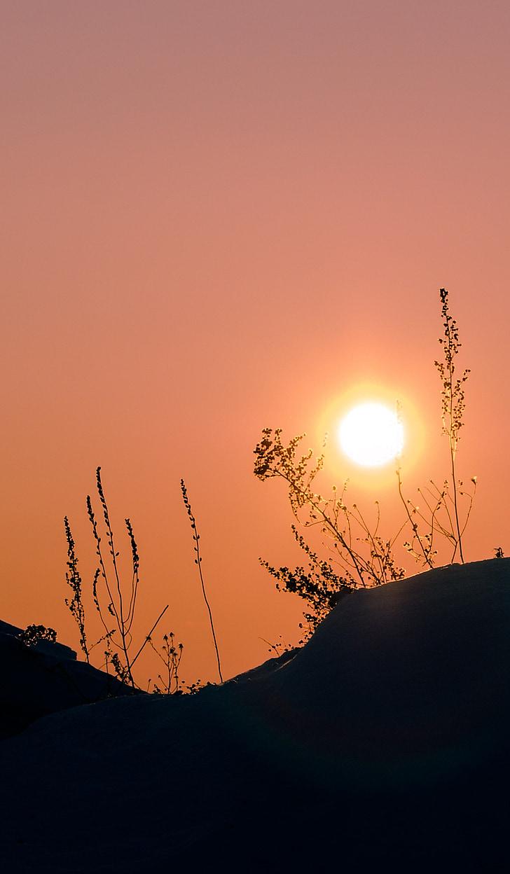 sol, Sibèria, l'hivern, posta de sol, silenci, natura, a l'exterior