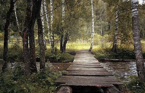 Most, dřevěný, staré, Příroda, Les, stromy, řeka