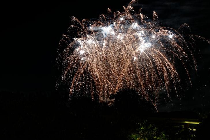 focs artificials, platja, magnífic, nit, explosió, celebració, exhibició de focs artificials