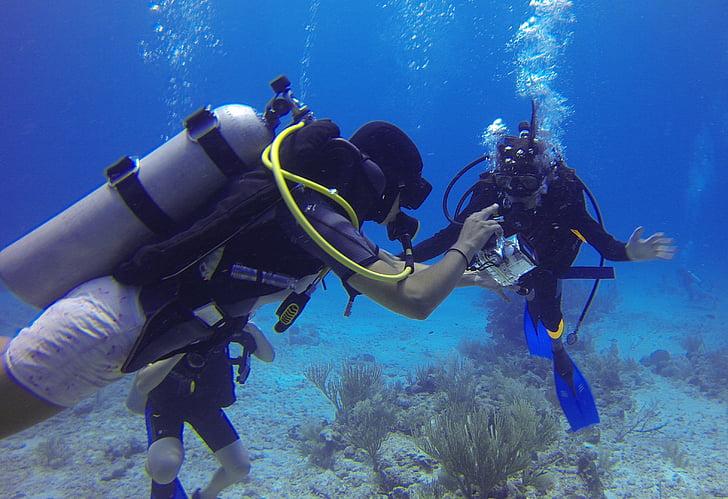 boce, mjehurići peraje, pod vodom, more, škola ronjenja, podvodni ronjenje, plava
