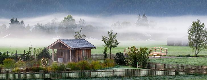 秋天的心情, 景观, 雾, 秋天, 心情, 早上, 感冒