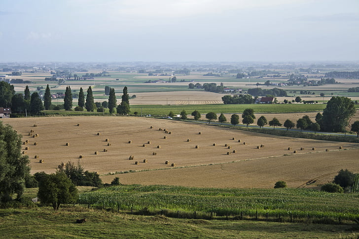 farming, france, french, harvest, agriculture, farmland, agricultural