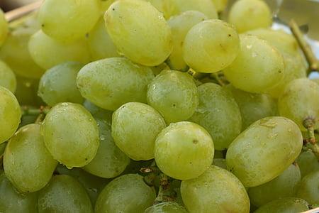 grapes, fruits, fruit, fruit bowl, green