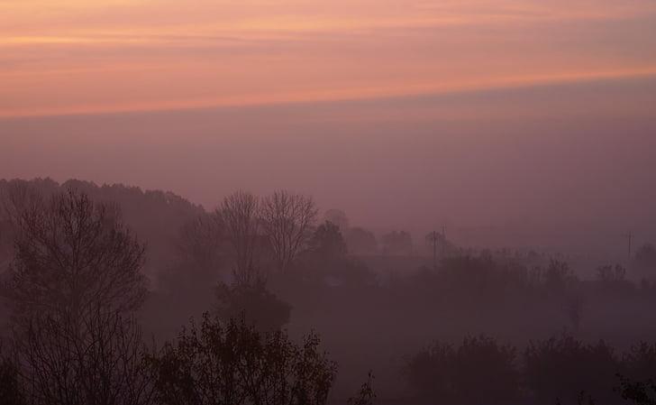 le brouillard, aube, lever du soleil, Du matin, matin, paysage, automne