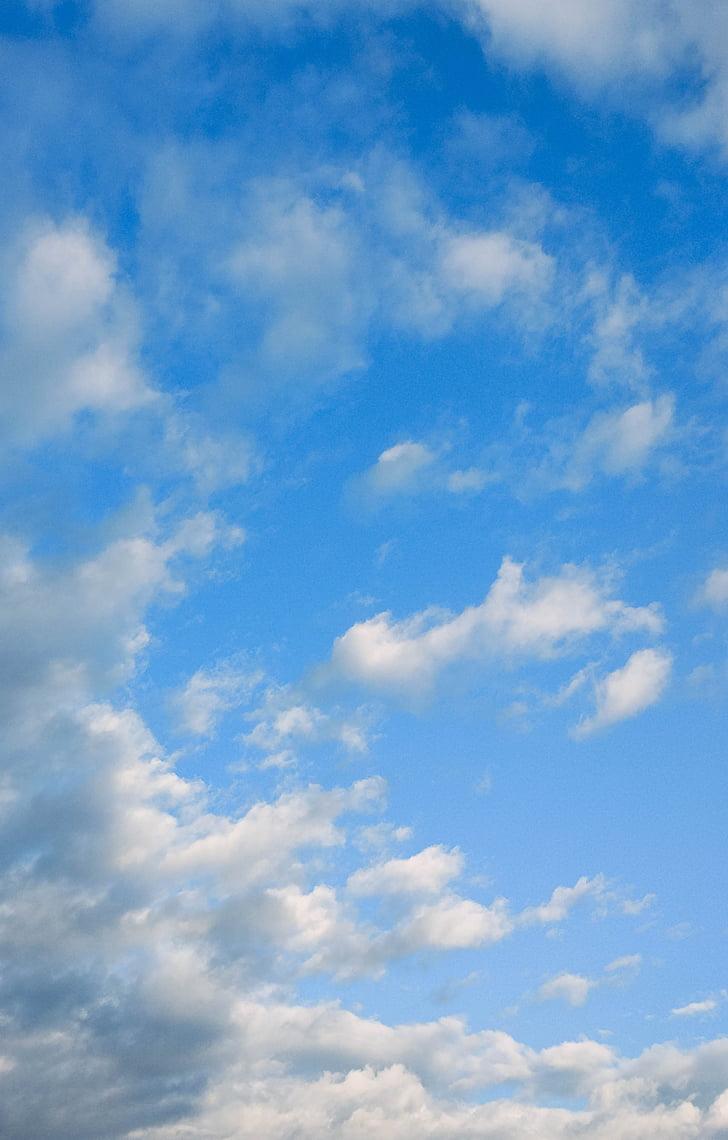 taevas, valge pilv, sinine taevas, sinine, loodus, Ilm, päev