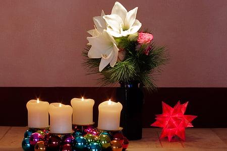 Adventný veniec, Vianoce, Amaryllis, biela, kvety, kvet, rastlín