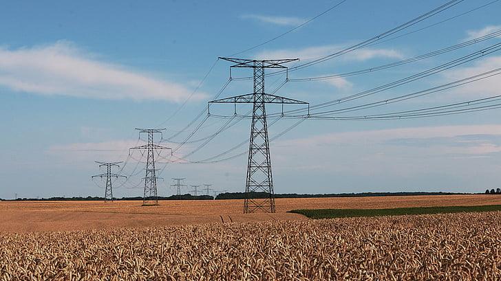 electricitat, línia de poder, cable, alta tensió, elèctric, connexió, piló