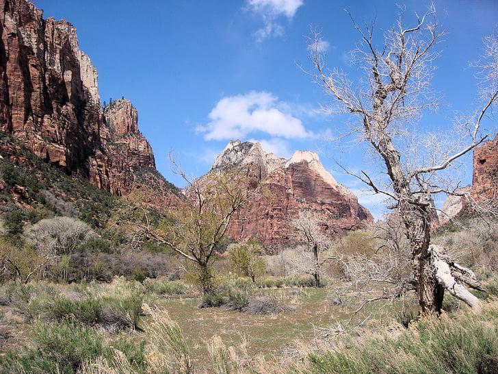 Zionin kansallispuisto, kansallispuisto, kivimuodostelma, Amerikka, Yhdysvallat, maisema, Utah