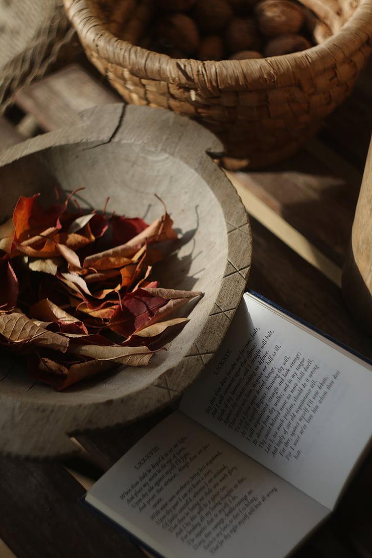 tardor, vermell, fulles, estat d'ànim, sonet, bodegons, aliments