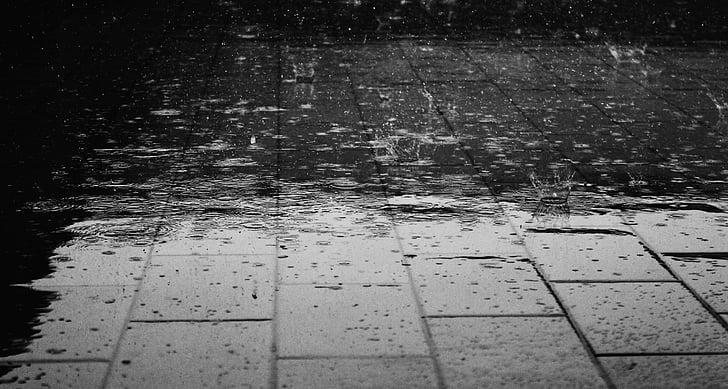 lietus, grindų, vandens, šlapiame kelyje, lašai