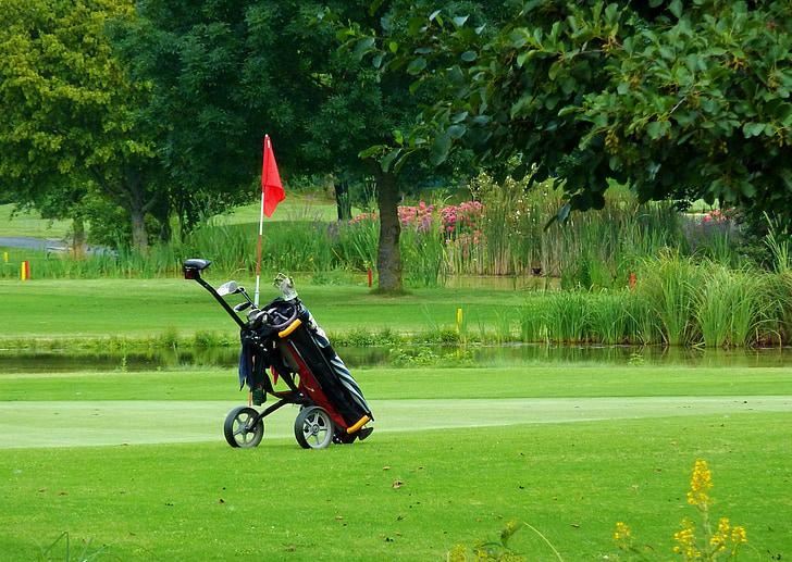 golf caddy, golf, green, caddy, golf carts, sport, golfer