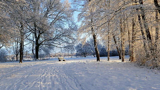 snowland country, winterland country, snow, bench in snow, wintry, winter magic
