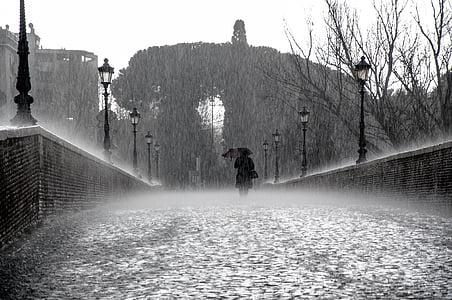 dež, mokro, kapljice, vode, deževno, deževen dan, dežne kaplje