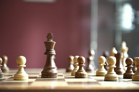 chess, game board, chess game, wooden figures, chess board, chess pieces, wood