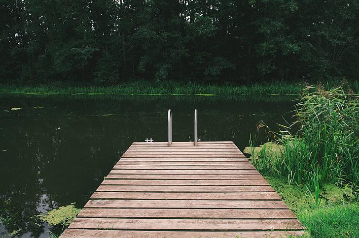 ท่าเรือไม้, บ่อ, ธรรมชาติ, แท่นวาง, สีเขียว, ป่า, เงียบสงบ