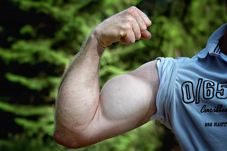 muskuļi, roka, būt mus kelt, cilvēka roku, vīrietis, spēkā, stiprums