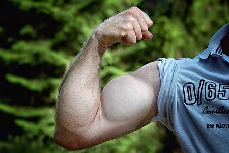 筋肉, アーム, mu をするケルト, 男の腕, 男, 力, 強度