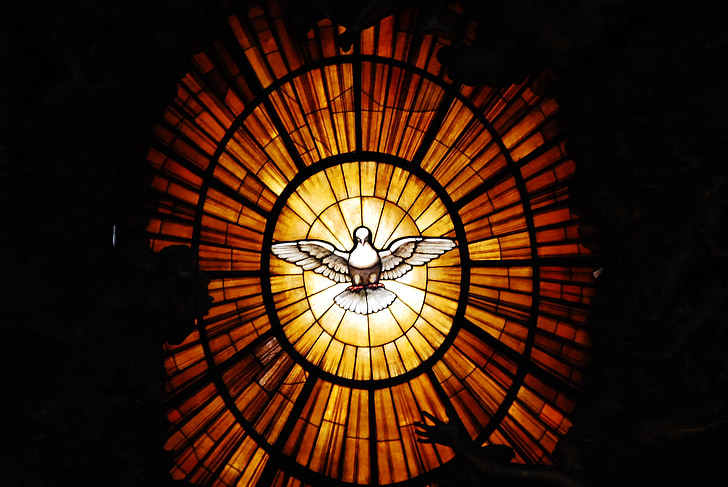 Vatikāns, miera balodis, Vatikāns, Rome, miera, garīgais, kultūras