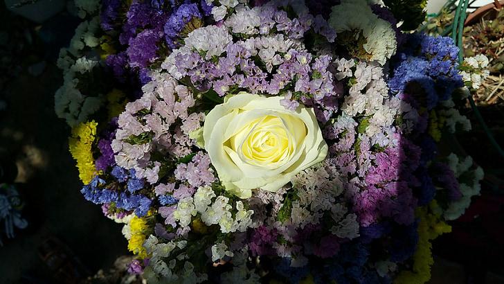 flors, colors, blanc, violeta, groc, flor, flors de RAM