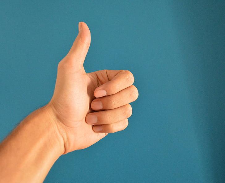 hand, duim, omhoog, teken, menselijke, vinger