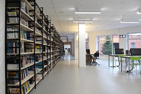 bibliotēka, grāmatas, lasījums, telpa, tabula, abažūrs, kultūra