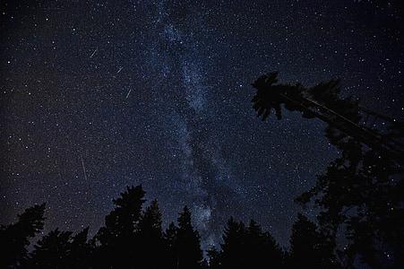 universet, Perseide, kosmos, stjerner, natur, Meteor, plads